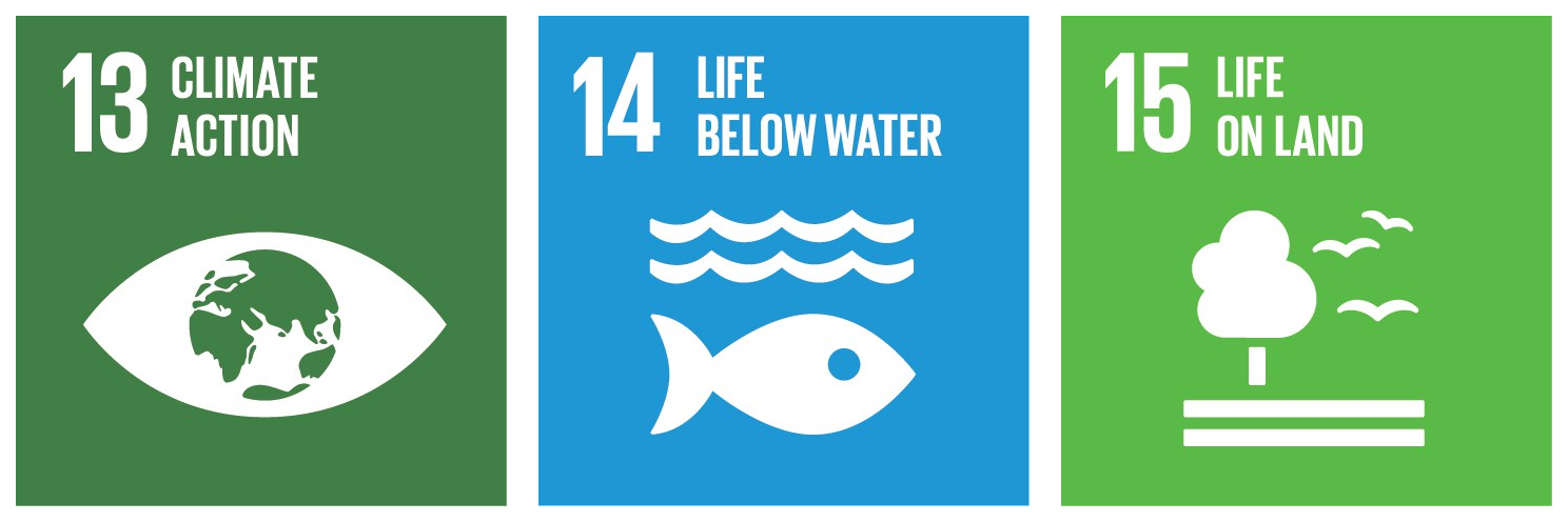 "Sustainable development goals, illustration of ""climate action"", ""life below water"" and ""life on land""."